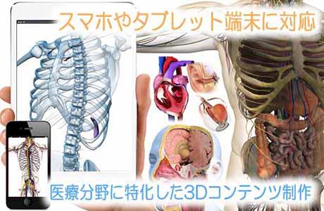 医療3Dコンテンツ制作